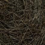 dubbing de chevreuil brun foncé