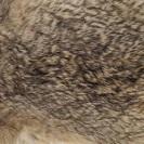 peau de lievre naturel pechemouchefly
