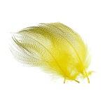 flanc de canard jaune
